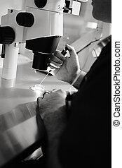 en, vitro, Laboratorio, equipo