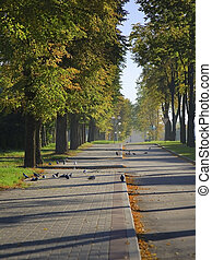 Walkway in the autumnal city