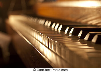 Piano keys on an antique piano played by The Buena Vista...