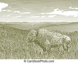 Woodcut Bison Scene - Woodcut style illustration of a bison...
