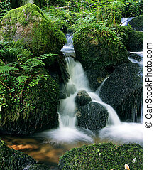 flowing water - little flowing river in beautiful green...