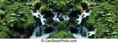 flowing water - little flowing river in beautiful green...