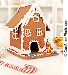Christmas time in the kitchen with gingerbread house and...