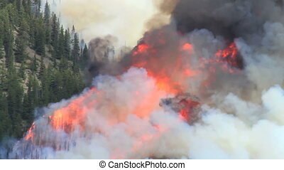 Forest fire flames 05 - Huge flames and smoke of a large...