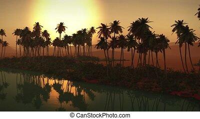 Egyptian sahara desert sand oasis
