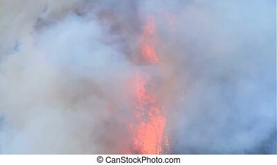 Forest fire flames 12 - Huge flames and smoke of a large...