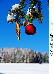 Christmas - bauble and fir cone on a Christmas tree outside...