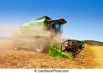 Combine harvester harvesting wheat cereal in spain field