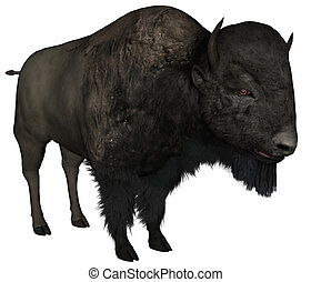 Bison - 3D rendered bison on white background isolated