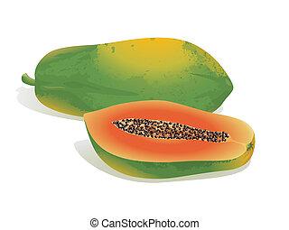 Papaya Fruit - Realistic vector illustration of a papaya and...
