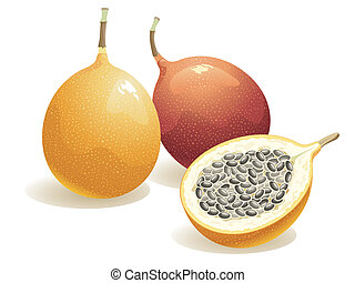Passion Fruit - Realistic vector illustration of a passion...