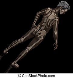 see-thru - a male model where the skeleton is seen thru the...