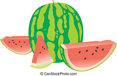 Tasty water-melon. A tasty berry