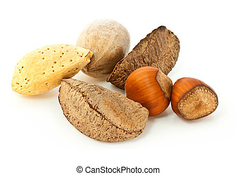 Mixed Nuts in the Shell - Mixed nuts in the shell isolated...