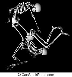 contortionists - a pair of skeletons in a unique pose,...