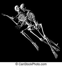 romance - a pair of skeletons in a unique pose, intended as...