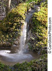 Wellness - Fresh spring water with bubbles and moss