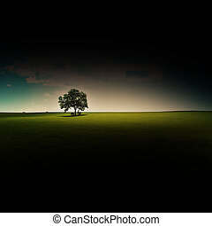 lone tree with art effect and copyspace