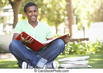 Male Teenage Student Studying In Park