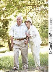 3º edad, pareja, ambulante, en, parque