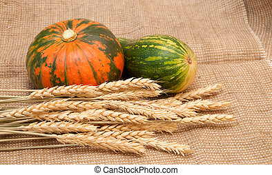 Pumpkins and wheat on a burlap background