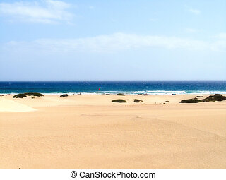Fuerteventura Canary islands Spain - Surf in Fuerteventura...
