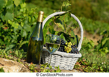 harvest and wine - glass and bottle of wine and grappes in...