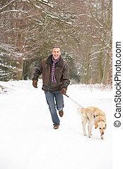 Senior Man Walking Dog Through Snowy Woodland