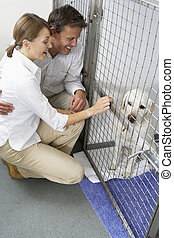 Couple Visiting Pet Dog