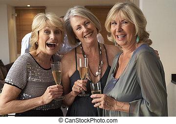 amigos, desfrutando, Um, vidro, de, champanhe, em, Um,...