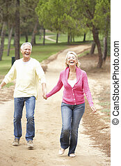 恋人, 楽しむ, 公園, シニア, 歩きなさい