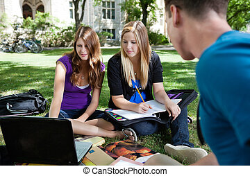 Students studying together - Group of students on the campus...