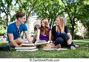 Students on campus ground - College students studying on...