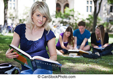 Students studying together - College students studying at...