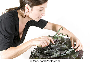 middle age woman gardener with  beautiful winter kale  plant in pot cultivator tool