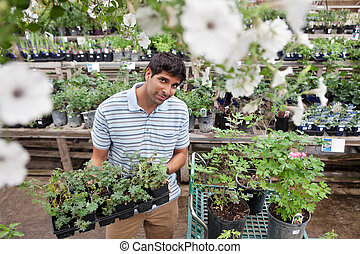 Man buying potted plants