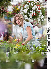 Woman spraying water on plants - Young woman spraying water...