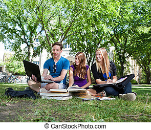 Teenagers studying on campus lawn - College students...