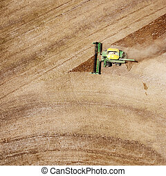 Harvester - A lone harvester on a nearly completed lentil...