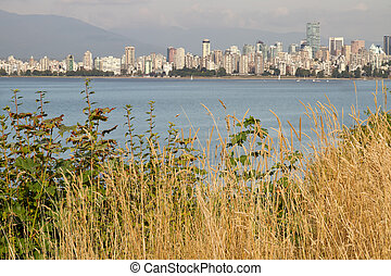 Vancouver BC Downtown from Hasting Mills Park - Vancouver BC...