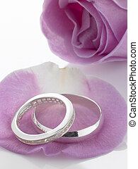 Silver Wedding Rings Resting On Rose Petals