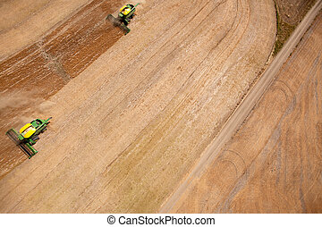 Two Harvesters in Lentil Field - Two harvesters combining a...