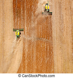 Lentil Field Abstract - Two harvesters combining a lentil...