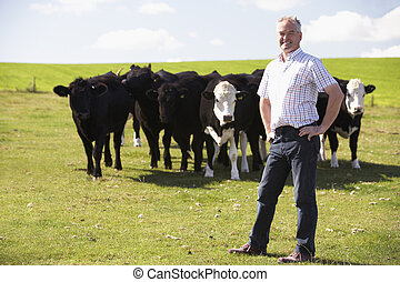 Farm Worker With Herd Of Cows