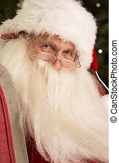Santa Claus Sitting In Armchair In Front Of Christmas Tree