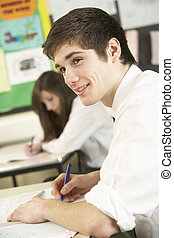 Male Teenage Student Studying In Classroom