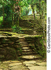 Old stone stairs and terraces in Ciudad Perdida, built by the people of Tayrona. This archeological site is close to Santa Marta in Northern Colombia.