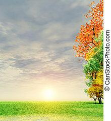 Wonderful autumn sunset