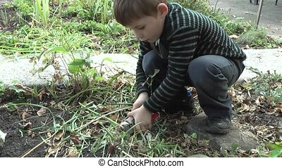 Gardening, - children work in the garden.