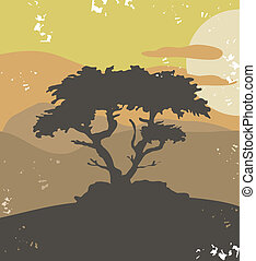 Pine tree, vintage illustration